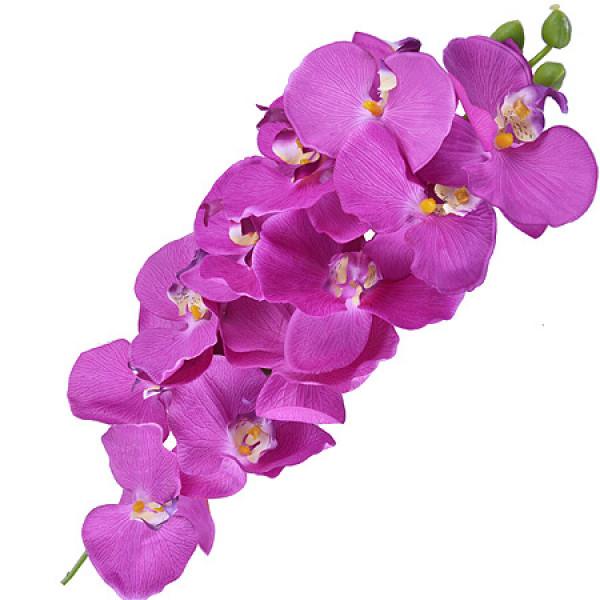14411MP Цветы искуственные орхидея 5 цветов