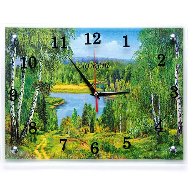 30х40-1 Часы настенные СЮЖЕТ в ассортименте